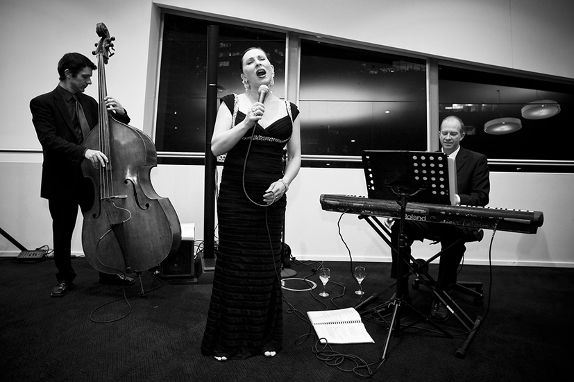 The Libby Hammer Trio performing in the Perth Convention Centre Ballroom lobby in 2009